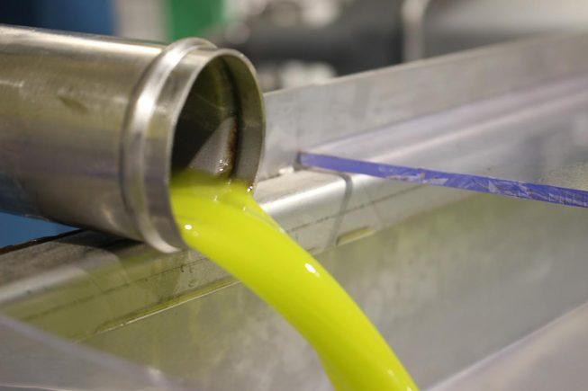 Von den kleinen Koroneiki-Oliven zum hochwertigen Villa Maria – Bio-Olivenöl Nativ Extra…
